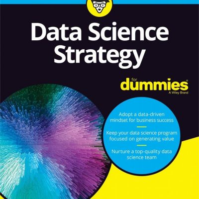 Data Science Strategy for dummies Cover